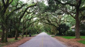 Magnolia Springs Is A Perfectly Picturesque Town In Alabama That's Great For A Summer Getaway
