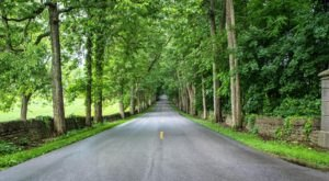 Take The Scenic Route Along Old Frankfort & Pisgah Pikes, The Most Idyllic Backroads In Kentucky