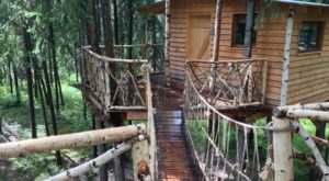 Cross A Swinging Bridge To Stay In Your Very Own Treehouse In Alaska