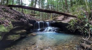 Ranked One Of The Best Kid-Friendly Hikes In Kentucky, Have Fun Exploring This Waterfall Trail In The Bluegrass