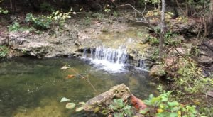Ranked One Of The Best Kid-Friendly Hikes In Missouri, Have Fun Exploring This Waterfall Trail In Branson