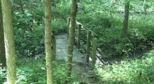 The Lush Forest Trail Through Maple Woods Natural Area In Missouri Will Give You Respite From Stress