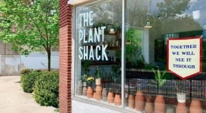The Charming Little Plant Shack Near Buffalo That's Every Plant Lover's Paradise
