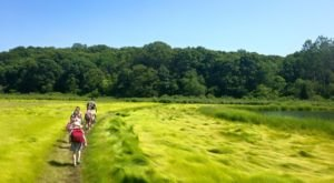 Walk Through A 370-Year-Old Farm At The Denison Pequotsepos Nature Center In Connecticut