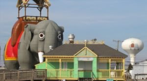 Enjoy A Live Virtual Tour Of New Jersey's Iconic Lucy The Elephant