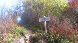 These Hiking Spots In The Great Smoky Mountains Were The First To Be Opened To The Public