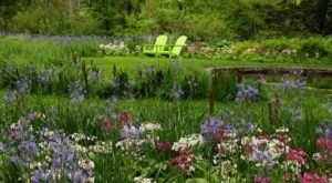 Take A Summer Stroll Through The Stunning Chanticleer Garden In Pennsylvania