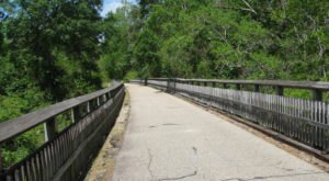 The Tammany Trace Near New Orleans Is The Perfect Paved Trail For The Weekend Warrior