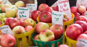 The Iconic Minnesota Honeycrisp Apple Didn't Even Exist Until 1960