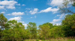 Hike The Pike Island Loop In St. Paul, Minnesota, To Get Out In Nature Without Leaving The City