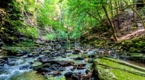 Hiking At South Cumberland State Park In Tennessee Is Like Entering A Fairytale