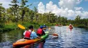 Spend An Afternoon Taking A Delightful Kayak Paddling Tour Through The Outer Banks In North Carolina This Spring