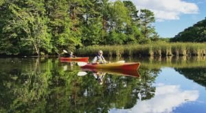 Spend An Afternoon Taking A Delightful Kayak Paddling Tour Through Cape Cod In Massachusetts This Summer