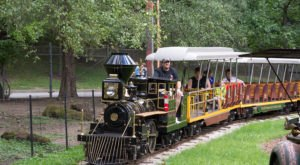 Hop Aboard The Boomerang Line At The Cleveland Metroparks Zoo For An Australian Adventure