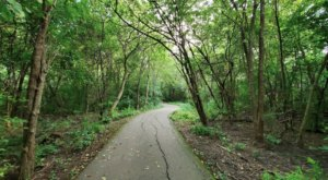 9 Trails In Metro Detroit You Must Take If You Love The Outdoors