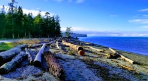 The Entire Birch Bay State Park In Washington Can Now Be Enjoyed From Your Couch