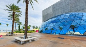 The Entire Salvador Dalí Museum In Florida Can Now Be Toured From Your Couch