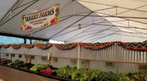 The Drive-Thru Produce Market At Tanaka Farms In Southern California That The Whole Family Will Love