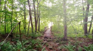 Hiking At Powder Mill Ledges In Rhode Island Is Like Entering A Fairytale