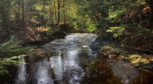 The Lush Forest Trails Through Cascade Falls In Maine Will Give You Respite From Stress
