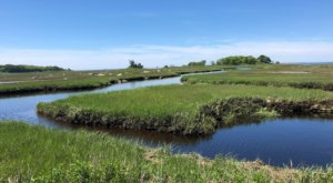 Wander Along A Gorgeous Saltwater Marsh At Barn Island Wildlife Management Area In Connecticut