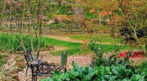 Take A Summer Stroll Through The Stunning Jensen Botanical Garden In Northern California