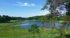Hike Through Tamarac National Wildlife Refuge For The Chance To See Minnesota Animals Up Close