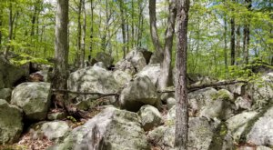 Discover 13,000-Year-Old Glacial Boulders Along The Ledyard Park Loop, A Short Hiking Trail In Connecticut