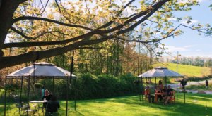 A Farm-To-Table Restaurant On A Beautiful Farm, Hilltop Cafe Is A Must-Dine Destination In New Hampshire