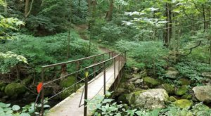 With Stream Crossings And Waterfalls, Virginia's Mill Creek Nature Park Is Like Something From A Fairytale