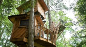 Sleep Underneath The Forest Canopy At The Observatory Treehouse In Kentucky