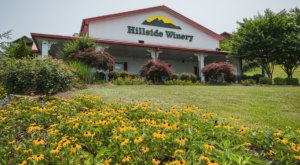 The Hillside Winery In Tennessee Will Delivery Some Of The State's Best Wines Right To Your Door