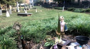 Most People Are Surprised To Stumble Upon This Ancient Cemetery In The Heart Of One Of North Carolina's Biggest Cities