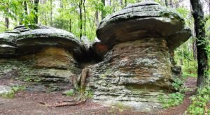 The Shawnee National Forest Is Home To The Most Dangerous Hikes In Illinois
