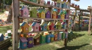 Explore The Bright And Colorful World Of Birdhouse Paradise In Indiana