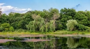 Enjoy An Easy And Peaceful Walk Around Lake Artemesia In Maryland