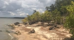 Explore Over 10 Miles Of Hiking Trails At Lake Eufaula State Park In Oklahoma