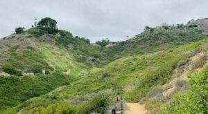 Take An Easy Loop Trail To Enter Another World At Forrestal Preserve In Southern California