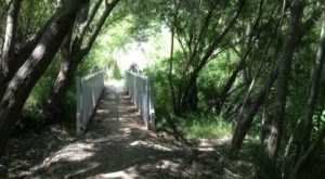 Hiking At Buck Gully Trail In Southern California Is Like Entering A Fairytale