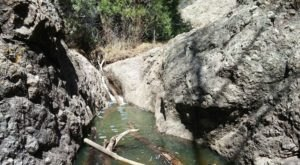 Hike To A Remote Forest Gorge On The Deer Creek Canyon Trail, A Secluded New Mexico Adventure