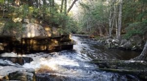 Cathance River Trail Is A Beginner-Friendly Waterfall Trail In Maine That's Great For A Family Hike