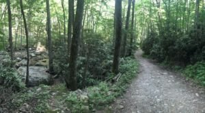 Meandering Alongside A Creek To A Beautiful Waterfall, Cascades National Recreation Trail In Virginia Is Bucket-List-Worthy