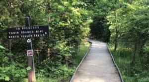Explore The Pyrite Mine Ruins That Nature Has Reclaimed On This Forested Trail Through Virginia