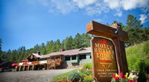 Head To The White Mountains Of Arizona To Visit Molly Butler Lodge, A Charming, Old Fashioned Restaurant