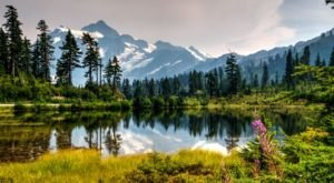 The 3-Hour Road Trip Around The Mount Baker Scenic Byway Is A Glorious Spring Adventure In Washington