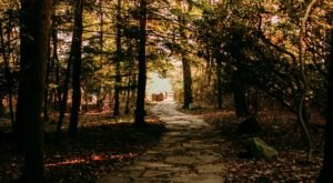 Hiking At Coopers Rock State Forest In West Virginia Is Like Entering A Fairytale