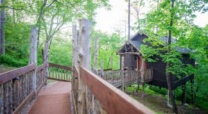 Arkansas' Winery Chateau Treehouse Is A Dreamy Escape In The Forest