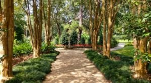 You'll Have A Hard Time Leaving The Peaceful Oasis That Is The Rip Van Winkle Gardens In Louisiana
