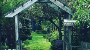 Wander Through 40 Acres Of Whimsy At Grand Oak Herb Farm In Michigan