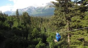 Swing From Tree To Tree This Summer On This Rainforest Zipline Adventure In Alaska